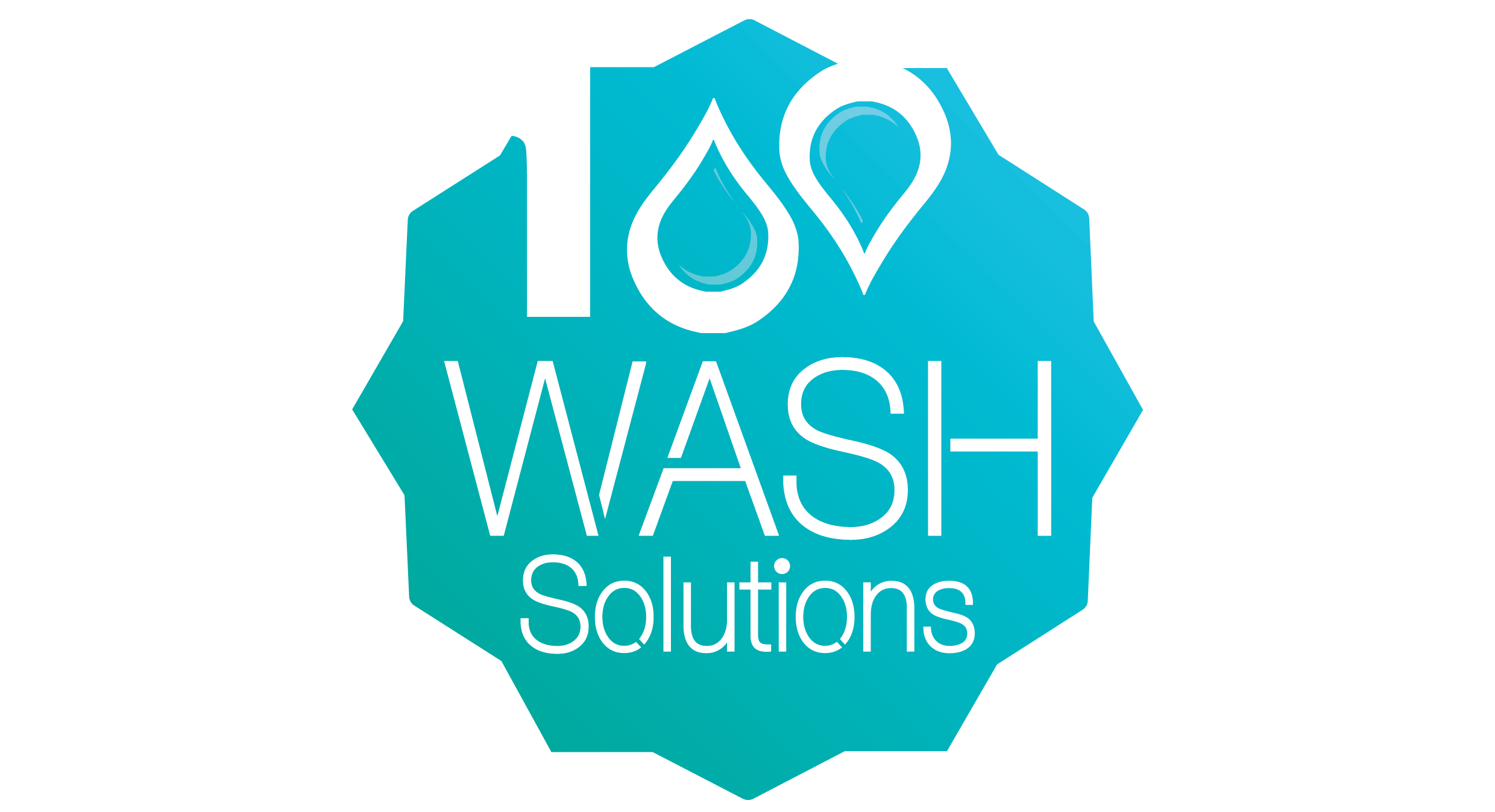 100 WASH Solutions